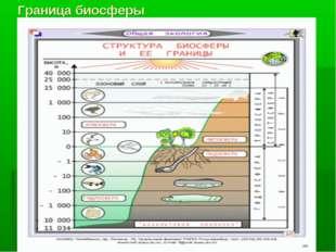 Граница биосферы