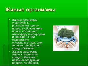 Живые организмы Живые организмы участвуют в разрушении горных пород, в образо