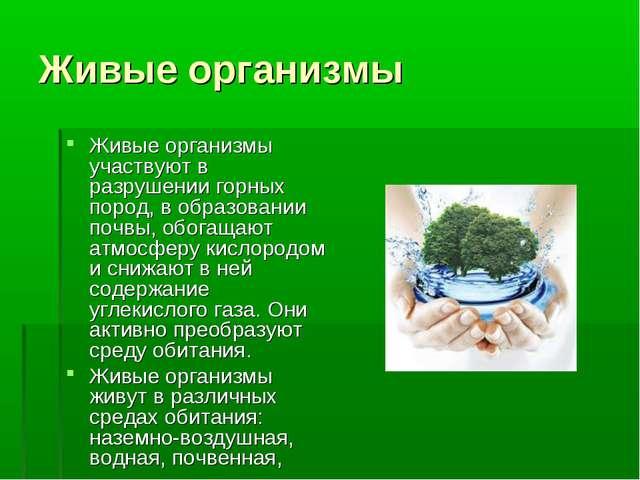 Живые организмы Живые организмы участвуют в разрушении горных пород, в образо...