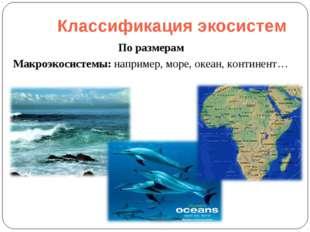 Классификация экосистем По размерам Макроэкосистемы: например, море, океан, к