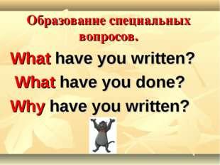 Образование специальных вопросов. What have you written? What have you done?