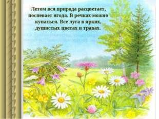 Летом вся природа расцветает, поспевает ягода. В речках можно купаться. Все л