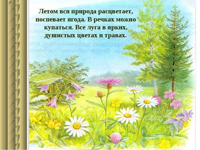 Летом вся природа расцветает, поспевает ягода. В речках можно купаться. Все л...