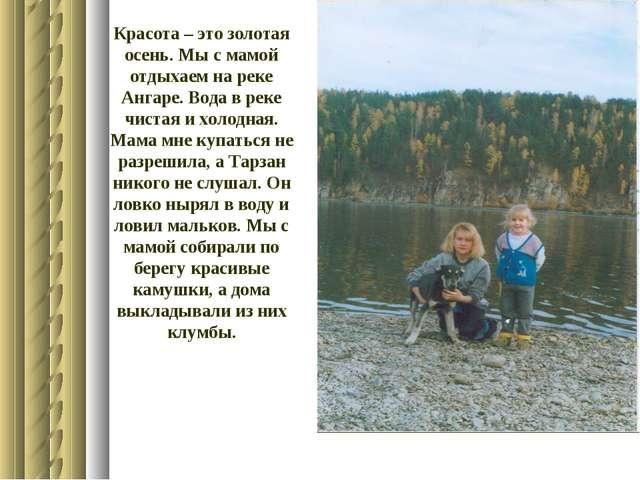 Красота – это золотая осень. Мы с мамой отдыхаем на реке Ангаре. Вода в реке...