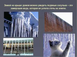 Зимой на крыше домов можно увидеть ледяные сосульки – это замерзшая вода, кот