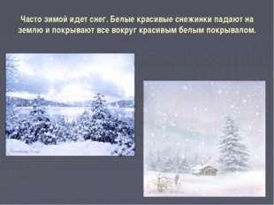Часто зимой идет снег. Белые красивые снежинки падают на землю и покрывают вс