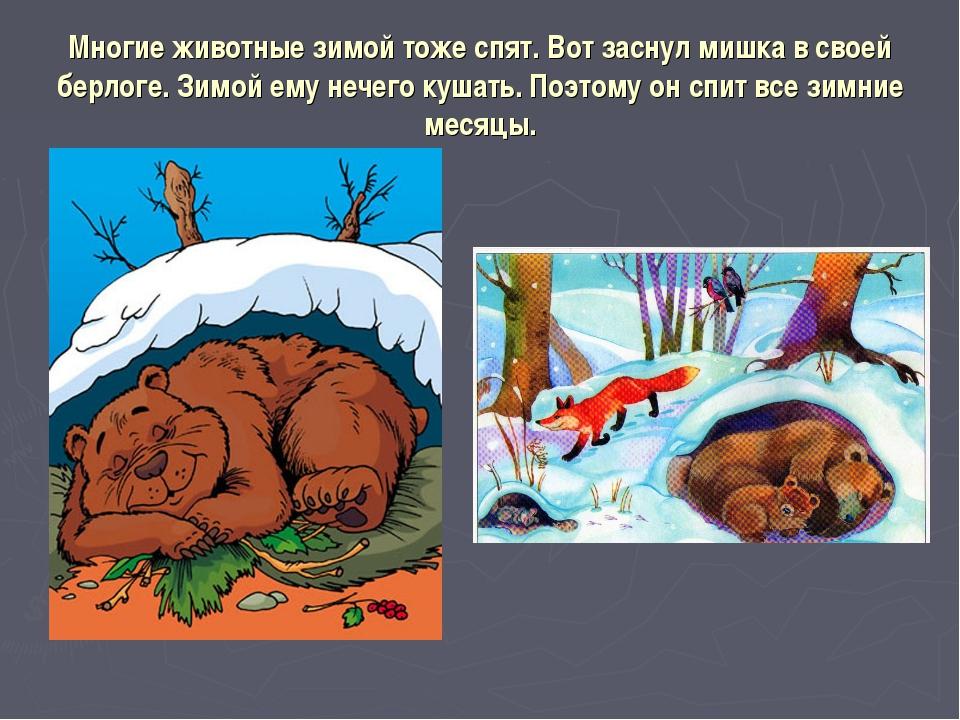 Многие животные зимой тоже спят. Вот заснул мишка в своей берлоге. Зимой ему...