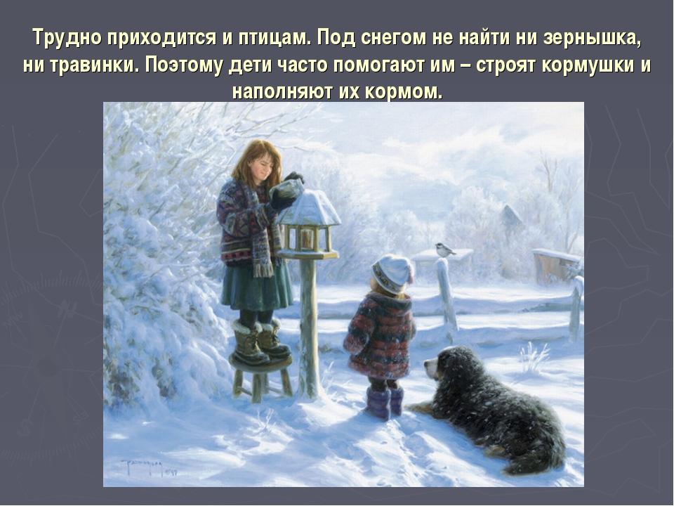 Трудно приходится и птицам. Под снегом не найти ни зернышка, ни травинки. Поэ...