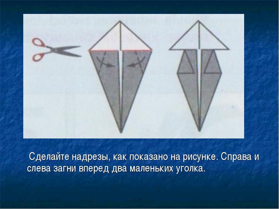 Сделайте надрезы, как показано на рисунке. Справа и слева загни вперед два м...