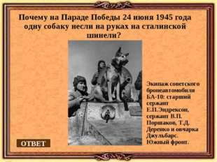 Почему на Параде Победы 24 июня 1945 года одну собаку несли на руках на стали