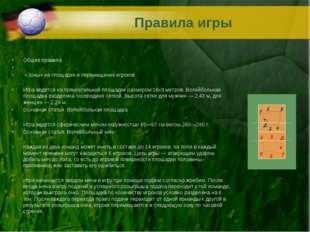 Правила игры Общие правила «Зоны» на площадке и перемещение игроков Игра ведё