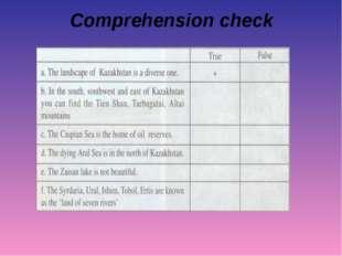 Comprehension cheсk