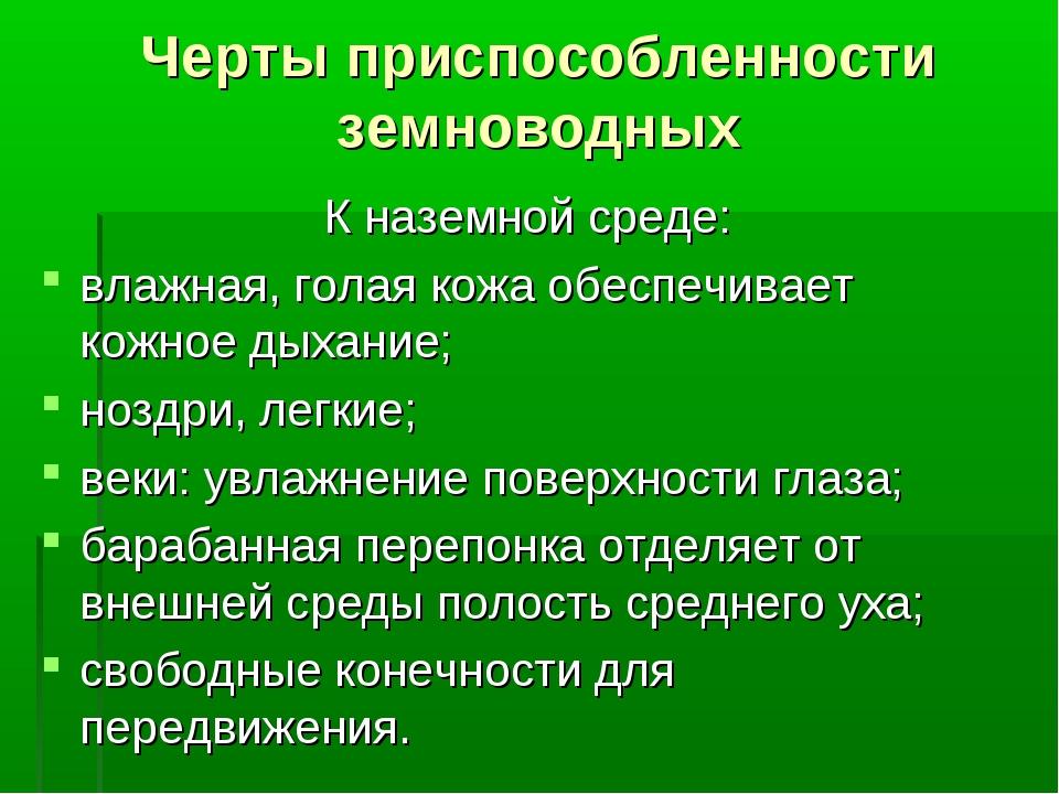 Черты приспособленности земноводных К наземной среде: влажная, голая кожа обе...