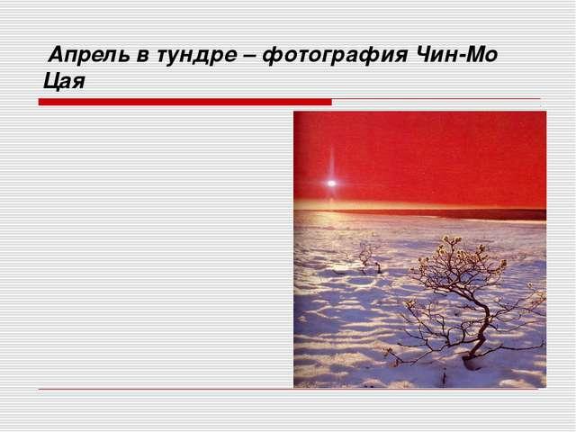 Апрель в тундре – фотография Чин-Мо Цая Солнце уходит в далекие страны В сум...