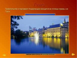 Гаага Правительство и парламент Нидерландов находится не столице страны, а в
