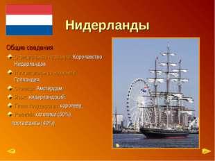Нидерланды Общие сведения Официальное название: Королевство Нидерландов Неофи