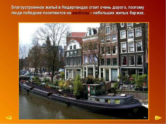 Благоустроенное жильё в Нидерландах стоит очень дорого, поэтому люди победнее...