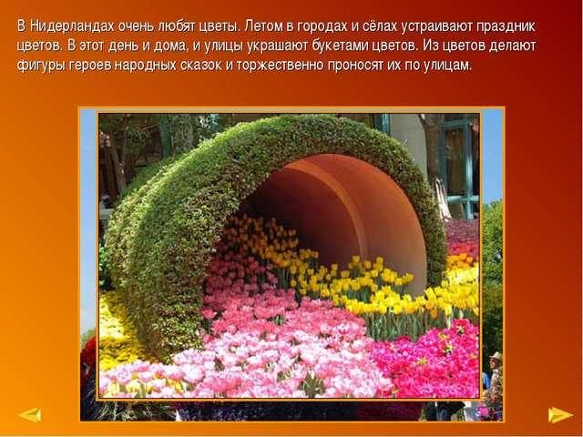 В Нидерландах очень любят цветы. Летом в городах и сёлах устраивают праздник...