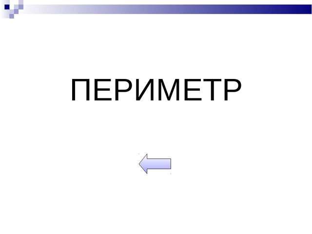 ПЕРИМЕТР