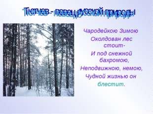 Чародейкою Зимою Околдован лес стоит- И под снежной бахромою, Неподвижною, н