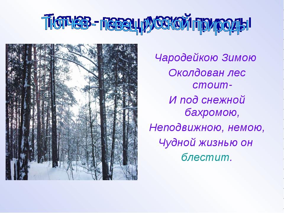 Чародейкою Зимою Околдован лес стоит- И под снежной бахромою, Неподвижною, н...
