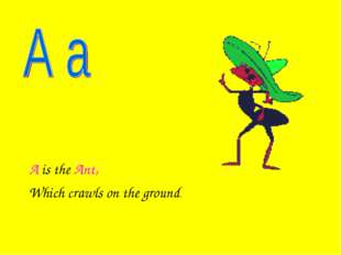 A is the Ant, Which crawls on the ground.