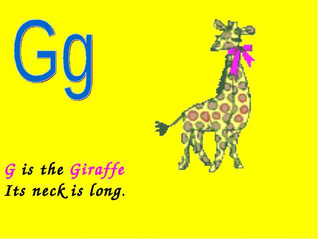 G is the Giraffe Its neck is long.