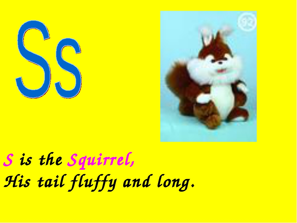 S is the Squirrel, His tail fluffy and long.