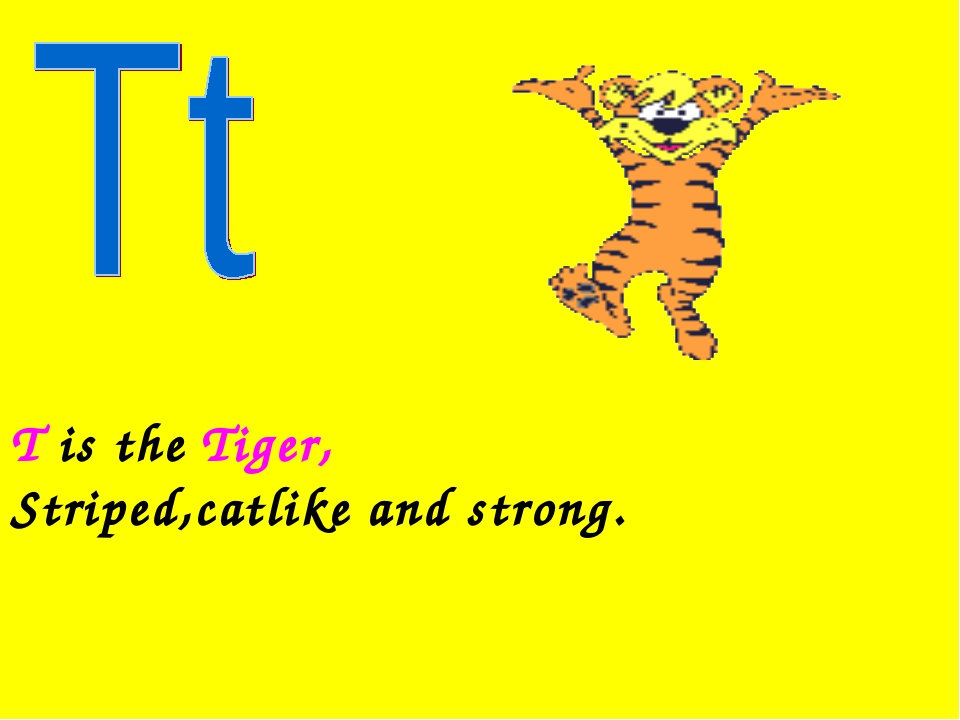 T is the Tiger, Striped,catlike and strong.