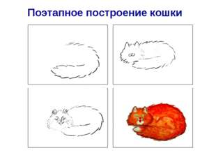 Поэтапное построение кошки