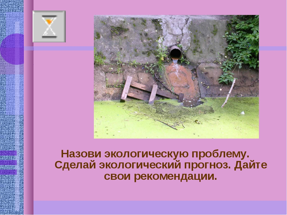 Назови экологическую проблему. Сделай экологический прогноз. Дайте свои реком...
