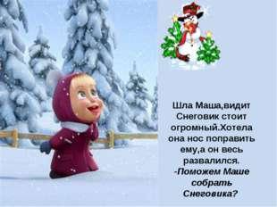 Шла Маша,видит Снеговик стоит огромный.Хотела она нос поправить ему,а он весь