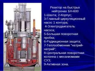 Реактор на быстрых нейтронах БН-600 1-Шахта; 2-Корпус; 3-Главный циркуляционн