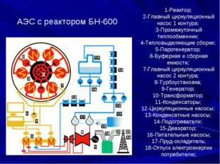 1-Реактор; 2-Главный циркуляционный насос 1 контура; 3-Промежуточный теплообм
