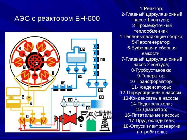 1-Реактор; 2-Главный циркуляционный насос 1 контура; 3-Промежуточный теплообм...