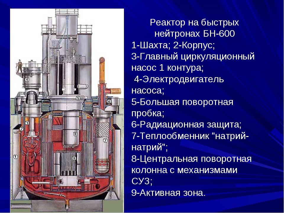 Реактор на быстрых нейтронах БН-600 1-Шахта; 2-Корпус; 3-Главный циркуляционн...
