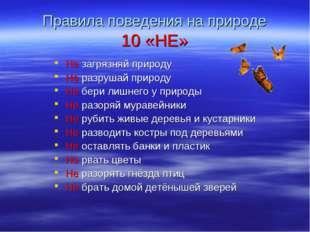 Правила поведения на природе 10 «НЕ» Не загрязняй природу Не разрушай природу