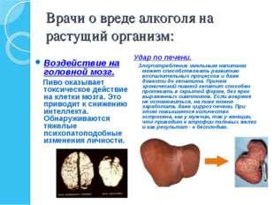 Врачи о вреде алкоголя на растущий организм: Воздействие на головной мозг. Пи