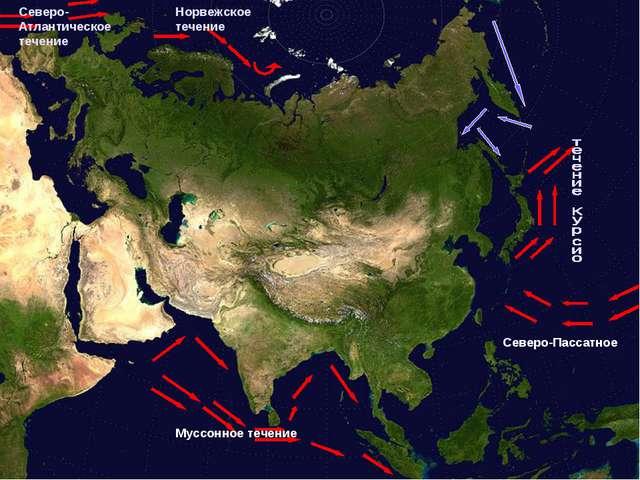 Северо-Атлантическое течение Норвежское течение Северо-Пассатное Муссонное те...