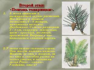 Второй этап: «Помощь товарищам». А меня относят к вымирающей группе растений.