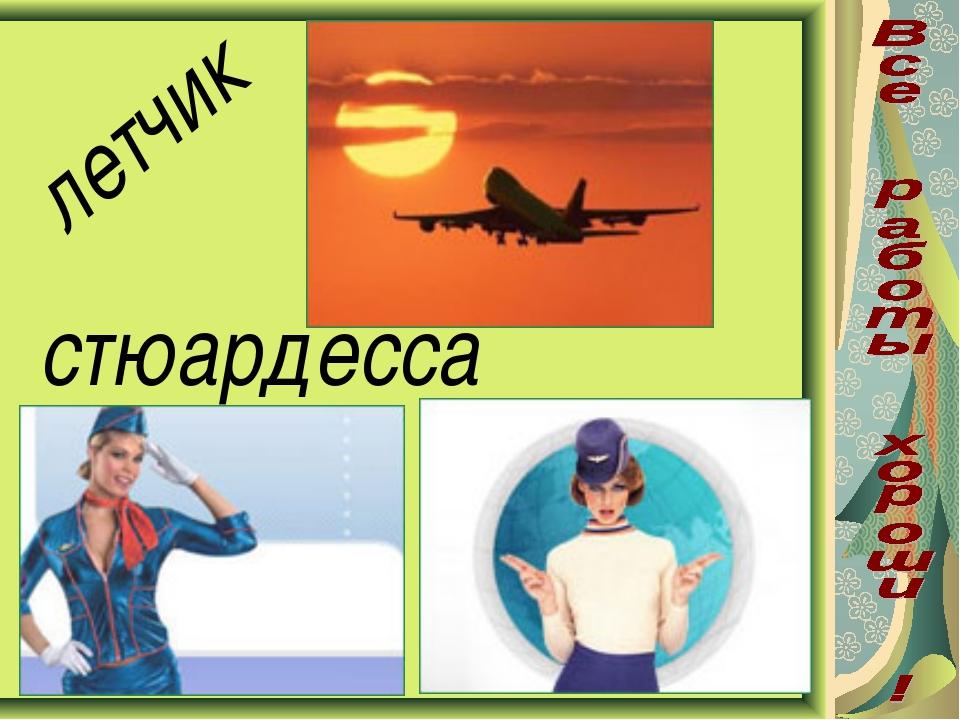 летчик стюардесса