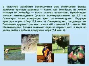 В сельском хозяйстве используется 16% земельного фонда, наиболее крупные равн