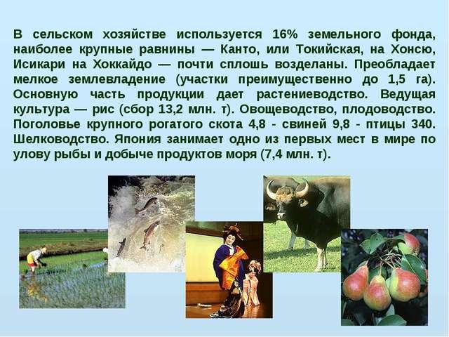 В сельском хозяйстве используется 16% земельного фонда, наиболее крупные равн...