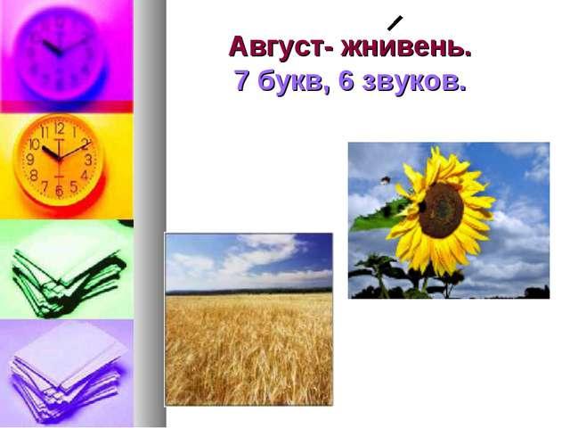 Август- жнивень. 7 букв, 6 звуков.