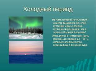 Холодный период Во тьме полярной ночи, тундра кажется безжизненной голой пуст