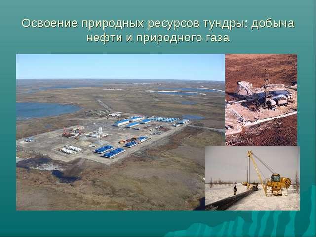 Освоение природных ресурсов тундры: добыча нефти и природного газа