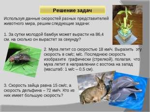 Используя данные скоростей разных представителей животного мира, решим следую
