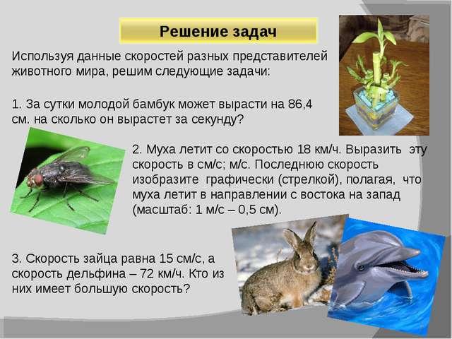 Используя данные скоростей разных представителей животного мира, решим следую...