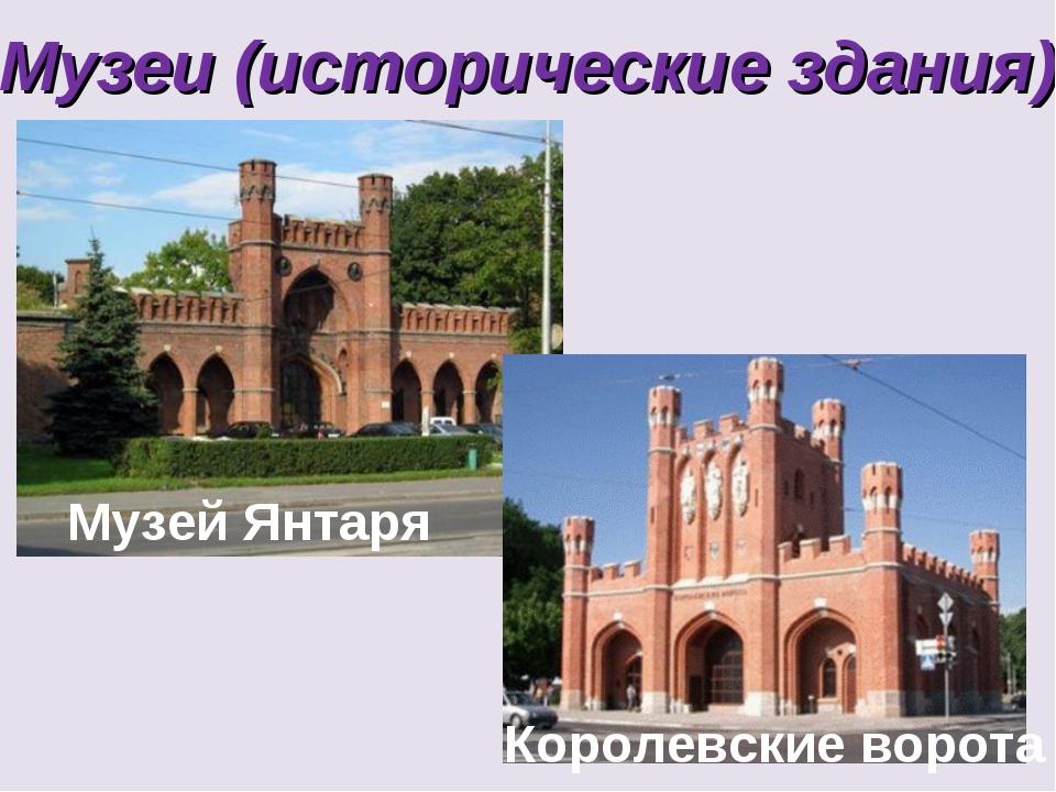 Музеи (исторические здания) Музей Янтаря Королевские ворота