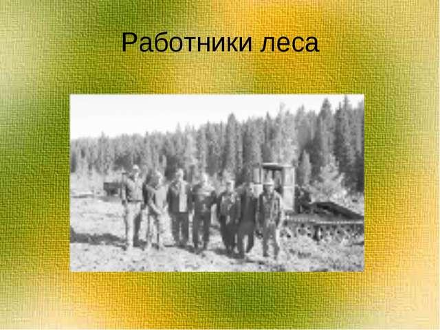 Работники леса